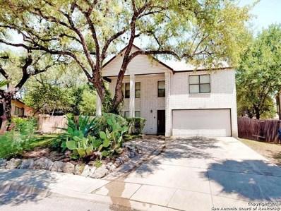 2207 Tworivers Dr, San Antonio, TX 78259 - #: 1334782