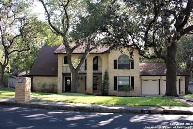 15611 Big Trail Dr, San Antonio, TX 78232 - #: 1334787