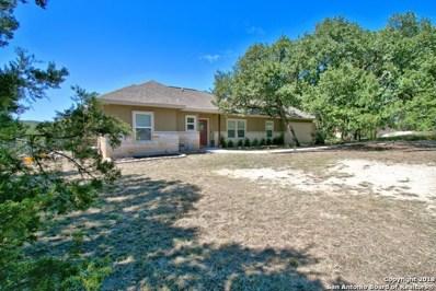 2043 Rocky Ridge Loop, Canyon Lake, TX 78133 - #: 1341470