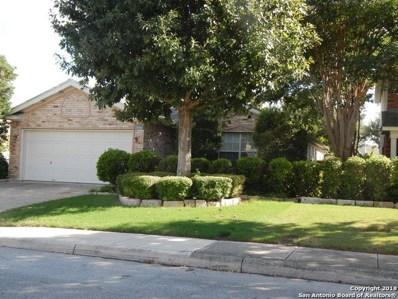 6604 Rosethorn Dr, San Antonio, TX 78249 - #: 1342058