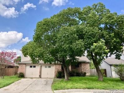 11411 Bear Paw Path, San Antonio, TX 78245 - #: 1342121