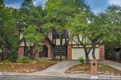 7319 Moss Brook Dr, San Antonio, TX 78255 - #: 1343139