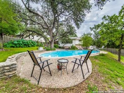 10603 Cedar Elm Dr, San Antonio, TX 78230 - #: 1343159