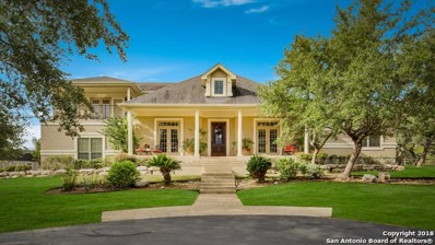 179 Long Branch, Spring Branch, TX 78070 - #: 1344117