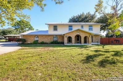 246 Bluebonnet Ln, San Antonio, TX 78223 - #: 1349721