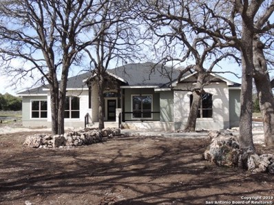 442 Hanging Oak, Spring Branch, TX 78070 - #: 1350049