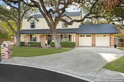 14214 Woodlark, San Antonio, TX 78231 - #: 1351771