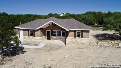 1012 Roadrunner Ln, Canyon Lake, TX 78133 - #: 1352501