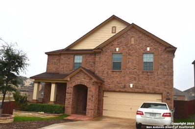 21207 Cinch Run, Bexar Co, TX 78258 - #: 1353258