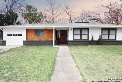 343 Springwood Ln, San Antonio, TX 78216 - #: 1353346