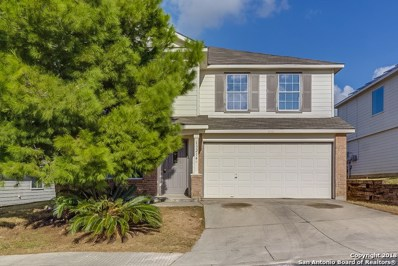 13214 Hopkins Glade, San Antonio, TX 78249 - #: 1354795