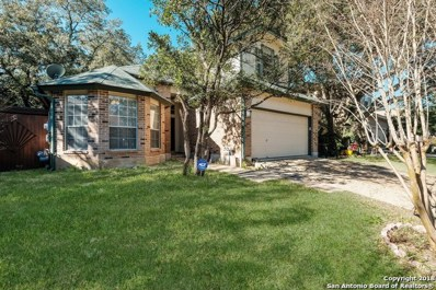 13915 Red Maple Wood, San Antonio, TX 78249 - #: 1355782
