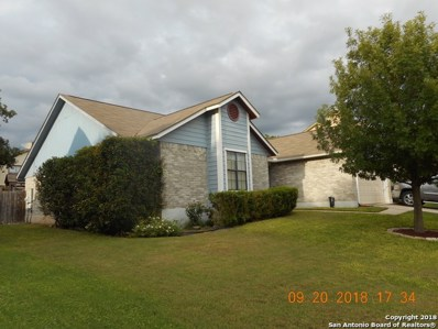 8831 Chilliwack Dr, San Antonio, TX 78250 - #: 1356779