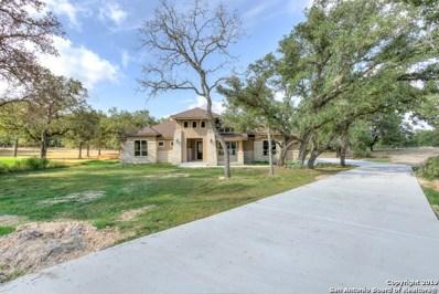 125 Bobcat Bend, La Vernia, TX 78121 - #: 1358311