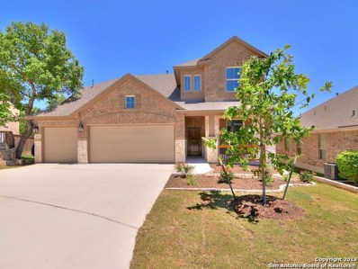 28934 Diana Falls, San Antonio, TX 78260 - #: 1358578