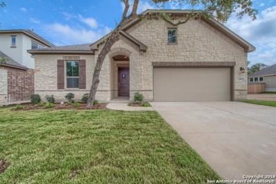 28964 Windlesham Way, San Antonio, TX 78260 - #: 1359714