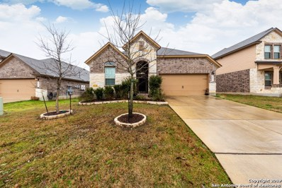 22823 Allegro Creek, San Antonio, TX 78261 - #: 1360343