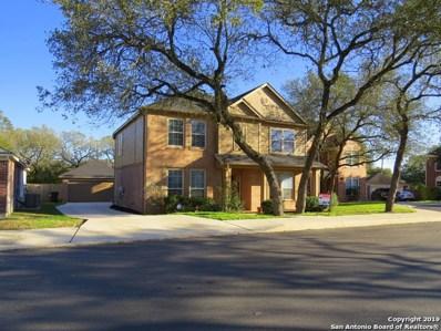 26810 Spiral Canyon, San Antonio, TX 78261 - #: 1361156