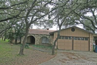 324 County Road 381, San Antonio, TX 78253 - #: 1361487