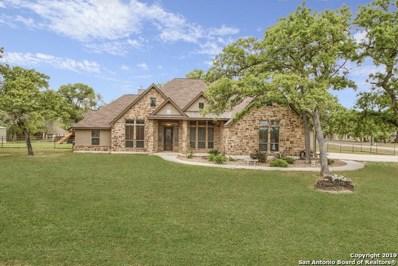 149 Copper Creek Dr, La Vernia, TX 78121 - #: 1362695