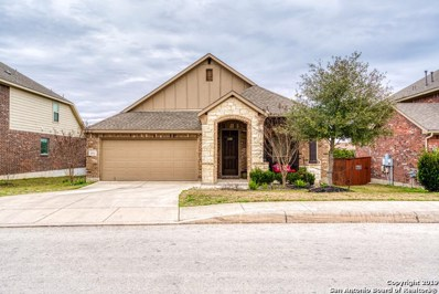 24542 Glass Canyon, San Antonio, TX 78260 - #: 1363548