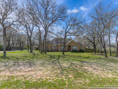 577 Rose Branch Dr, La Vernia, TX 78121 - #: 1364493