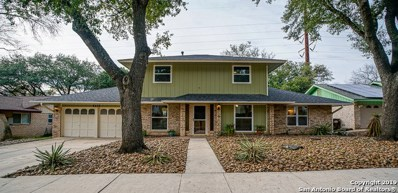 6415 Red Jacket Dr, Leon Valley, TX 78238 - #: 1364627