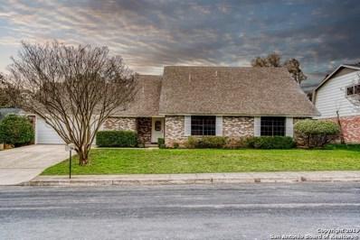 1117 White Pine St, San Antonio, TX 78232 - #: 1365854