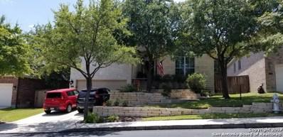 18647 Rogers Glen, San Antonio, TX 78258 - #: 1366468