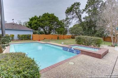 384 Hunters Creek Dr, New Braunfels, TX 78132 - #: 1366610