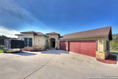 23303 S Breeze St, San Antonio, TX 78258 - #: 1367617