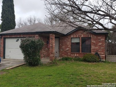 9811 Jenson Pt, San Antonio, TX 78251 - #: 1367905
