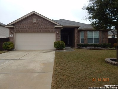 905 Crenshaw Ct, Cibolo, TX 78108 - #: 1368220
