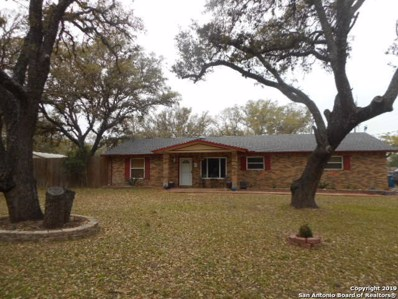19 Sunrise Dr, Pleasanton, TX 78064 - #: 1368544