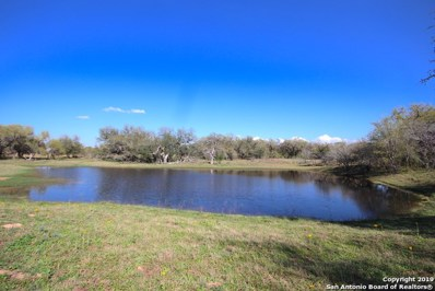 80.28 Acres Us Highway 181, Floresville, TX 78114 - #: 1370412