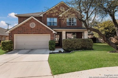 26831 Rustic Brook, San Antonio, TX 78261 - #: 1372389