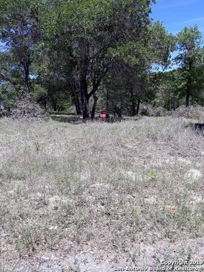 2039 Mesquite Ridge, San Antonio, TX 78264 - #: 1374910