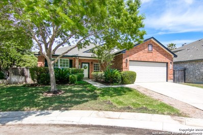 9515 Tascate Dr, Helotes, TX 78023 - #: 1375891