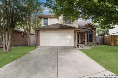 7283 Burns Way, San Antonio, TX 78250 - #: 1376400