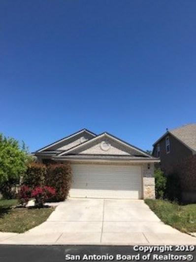 2719 Trinity Glade, San Antonio, TX 78261 - #: 1377803