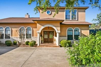 25820 Echo Terrace St, San Antonio, TX 78260 - #: 1379938
