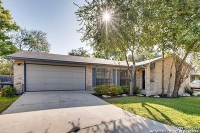 8702 Welles Dale Dr, San Antonio, TX 78240 - #: 1381797