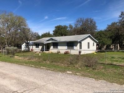 127 Oakridge St, Canyon Lake, TX 78133 - #: 1383649