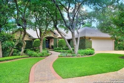 17319 Fountain View Dr, San Antonio, TX 78248 - #: 1384382