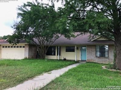 1116 Tumbleweed Dr, New Braunfels, TX 78130 - #: 1385626