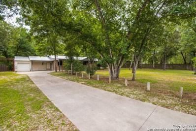 23014 Dream View, Elmendorf, TX 78112 - #: 1387092