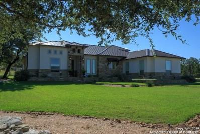 335 Lookout Ridge, New Braunfels, TX 78132 - #: 1389466