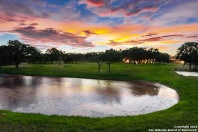 122 Big Oak Ln, La Vernia, TX 78121 - #: 1390636