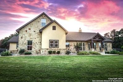 181 Vintage Ranch Circle, La Vernia, TX 78121 - #: 1391502