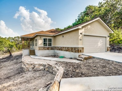 1750 Johnson Rd, Canyon Lake, TX 78133 - #: 1394789